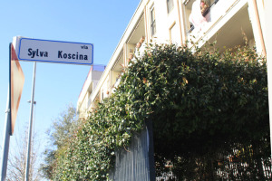 3.Koscina.Foto di Denisa Nistor Podar.ridotto