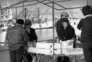 10.vendita_pesce