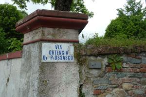 3.Pinerolo_Ortensia di Possiasco.ridotta_Junck