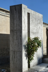 10_Levi-Montalcini