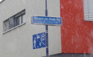 5.Ildegard Von Bingen.Friburgo(D).Foto di Filippo Altobelli